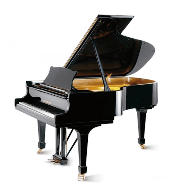 Wilhelm Steinberg Piano S188 Negro