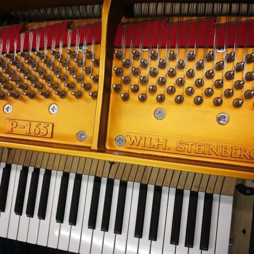 Wilhelm Steinberg Piano P152 P165 teclado